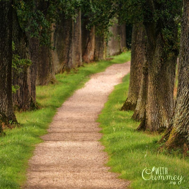 Lifestyle Se mettre au vert en 5 petites étapes,